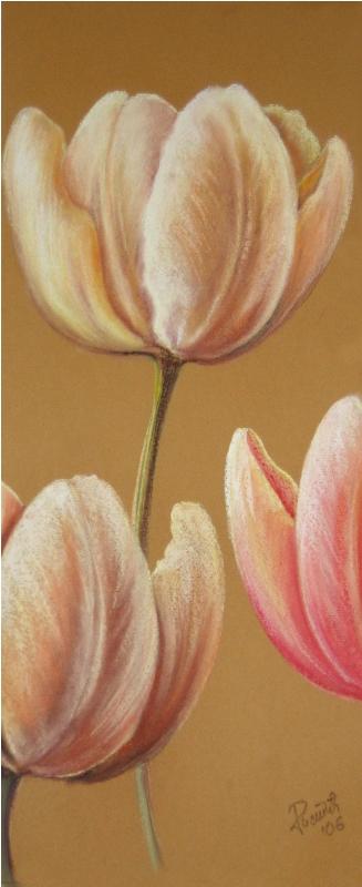 MIRISI,pastel,(60x25)cm